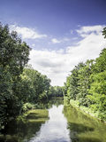 River with trees in summer Stock Images