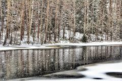 River Trees Winter Landscape Outdoors Nature Snowfall Stock Images