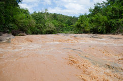 River in tropical rain forest Stock Photo