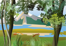 River in the tropics. Landscape with river and high hills of the jungle Stock Image