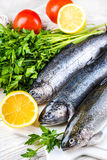 River trout with fresh tomatoes Stock Image