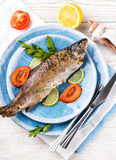 River trout with fresh tomatoes Royalty Free Stock Photos