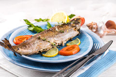 River trout with fresh tomatoes Royalty Free Stock Image