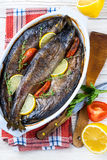 River trout with fresh tomatoes Stock Photo