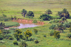River turn. African river turn details and savana Stock Photos