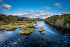 River Tyne abaixo de Corbridge Fotografia de Stock Royalty Free