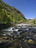 River Tywi RSPB Dinas Royalty Free Stock Photography