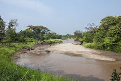 River in Uganda. Ishasha River in Queen Elizabeth Park in Uganda, Africa Royalty Free Stock Photos