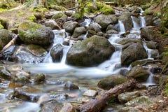 River Ullu-Murudzhu in Dombai. Karachai,Cau casus,Russia Royalty Free Stock Photos
