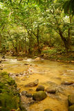 River. The river Ulu Yam in Selangor, Malaysia Royalty Free Stock Images
