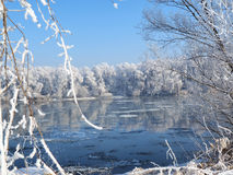 River under the ice and tree branches covered with white frost Stock Photos