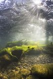 River underwater rocks on a shallow riverbed stock photos