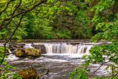 River Ure at Upper Aysgarth Falls Stock Photo