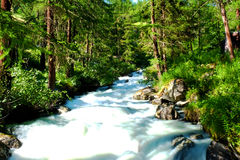 River in Val d'Ayas Royalty Free Stock Images