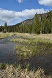River Valley Foto de Stock Royalty Free