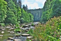 River Valley Стоковые Изображения