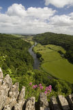River valley. The valley of the River Wye in summer; view from above from Symonds Yat rock, Forest of Dean,  Herefordshire, England Stock Photos