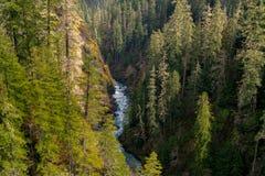 River Valley Royaltyfria Bilder