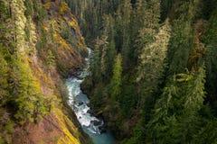 River Valley Arkivfoton