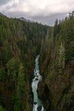River Valley Arkivbilder