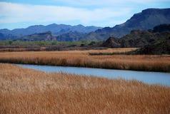 River valley in Arizona Stock Photos