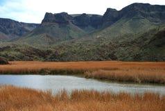 River valley in Arizona stock image
