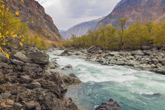 River Valley Chulyshman, Altai Royalty Free Stock Images