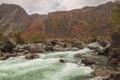 River Valley Chulyshman, Altai Stock Image