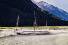 River Valley in den Bergen Stockfotografie