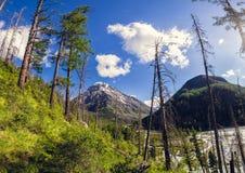 River Valley in den Bergen Stockfotos