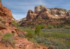 River Valley fertile in canyon del deserto dell'arenaria rossa Immagini Stock Libere da Diritti