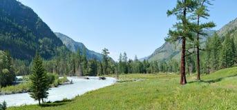 River Valley Kucherla. Trekking in the Altai Mountains Stock Photo