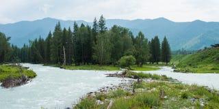 River Valley Kucherla. Trekking in the Altai Mountains Stock Images