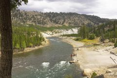 Wyoming Yellowstone national park,River in the Valley. royalty free stock photos