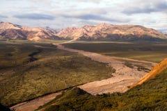 River Valley och bergAlaska Denali område USA Arkivfoton