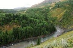 river valley owiec Fotografia Royalty Free