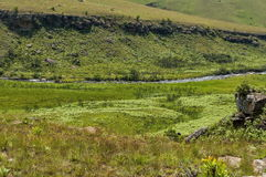 River valley in Royal Natal National Park in Drakensberg Royalty Free Stock Photography