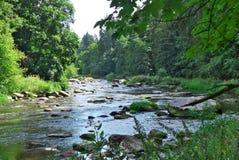 River in the valley. River Sazava in the valley - rocks named Stvoridla - minimum hdr used  - blue sky Stock Image