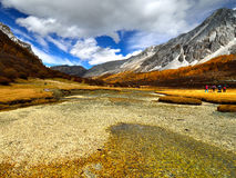 River Valley on the Tibet Plateau Royalty Free Stock Photos