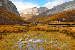 River Valley on the Tibet Plateau Stock Photography