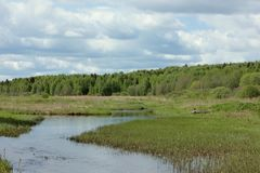 River Valley y bosque Fotografía de archivo libre de regalías
