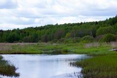 River Valley y bosque Imagen de archivo libre de regalías
