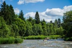 River Vantaa. Verdant river landscape. Salmon stream Royalty Free Stock Photography