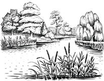River vector landscape with trees and water plants, hand drawn illustration. River landscape with trees and water plants, vector illustration. Riverside with Royalty Free Stock Photos