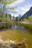 River view. Yosemite National Park, California, United States Royalty Free Stock Images