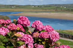 River view in Lahinch, Co. Clare Royalty Free Stock Image