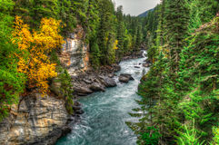 River Views Royalty Free Stock Photo