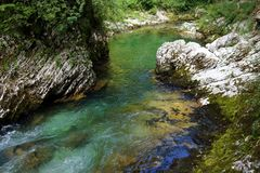 River in the Vintgar Gorge Royalty Free Stock Photos