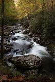 River vista of swiftly flowing water over rocks in an autumnal mountain landscape. Vertical aspect Stock Images