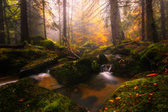 River in Vitosha mountain. Bulgaria. Beautiful autumn Royalty Free Stock Images